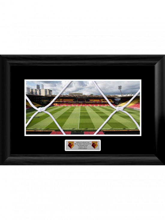 FRAMED ROOKERY GOAL NET STADIUM