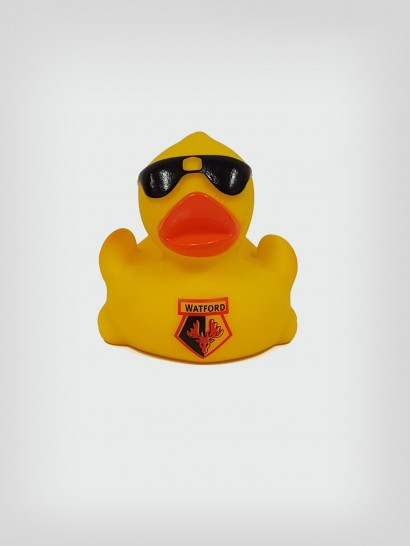 DUCK WITH SHADES