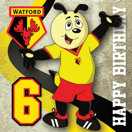 HARRY 6 TODAY CARD