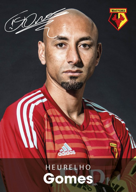 18/19 GOMES PLAYER PICTURE